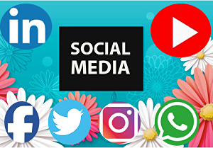 I will do social media marketing