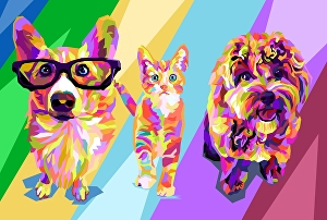 I will make your pet into wpap pop art illustration