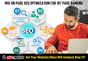 I will Do Wix SEO Optimization, Custom Meta Tags and Schema Markup for 1st page ranking - 5 Pages