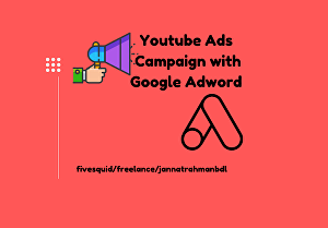 I will setup Youtube ads campagin with Google adword for video marketing