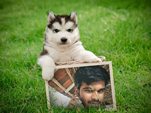 I will make this puppy hold your photo