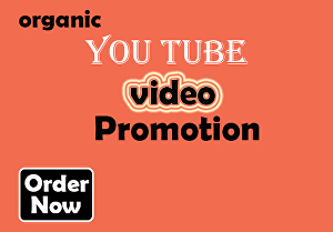 I will do best organic YouTube Video promotion