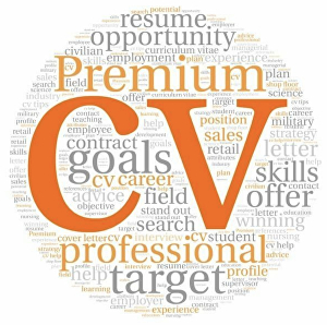I will Write your CV
