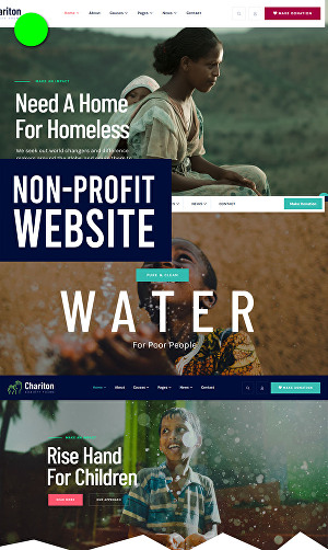 I will create professional website for non profit organization