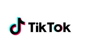 I will Grow Your Tik Tok account organically and manually