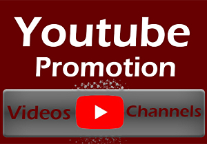 I will run a google adword campaign for a single youtube video