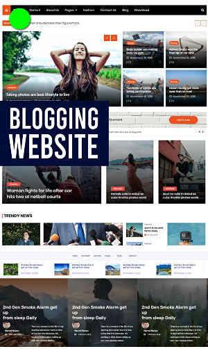 I will create professional wordpress or wix blog website design