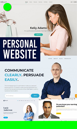 I will create personal, portfolio, niche, business or company website