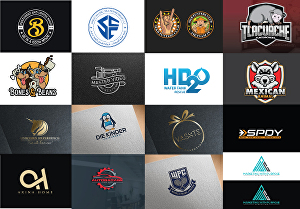 I will do professional logo design
