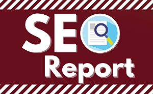 I will do the best SEO audit service in 24hrs