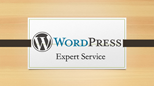 I will fix WordPress issues, errors, or WordPress problems