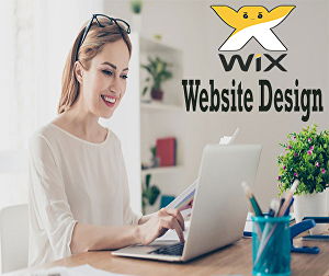 I will design, develop or redesign a business Wix website