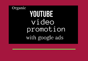 I will do youtube video promotion with google ads