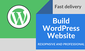 I will build a professional WordPress website, eCommerce website,blog website, business website