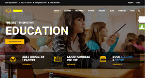 I will create an online course school website
