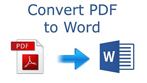 I will convert  PDF file to Word format for easy editing