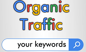 I will Provide Keyword Targeted Daily Website Traffic