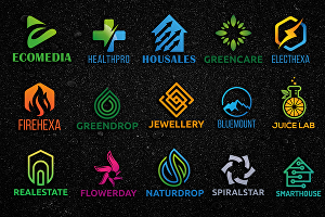 I will design a professional business or company logo within 24 hours