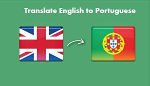 I will  provide you with professional translation from English to Portuguese