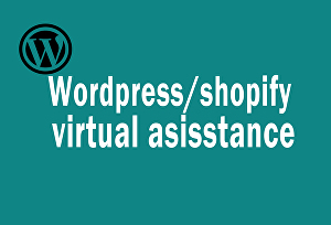 I will be your wordpress or shopify virtual assistant