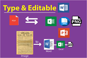 I will convert Ms. Word to pdf or pdf to word documents professionally