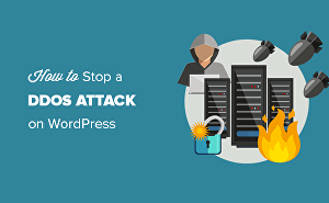 I will secure your wordpress website from hackers and attacks