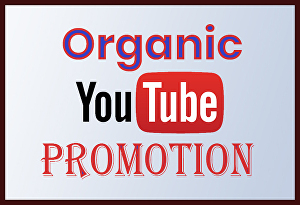 I will do Youtube video promotion or marketing