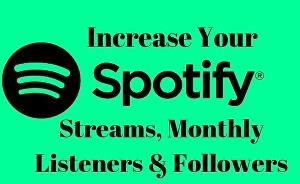 I will  organically promote your Spotify music track