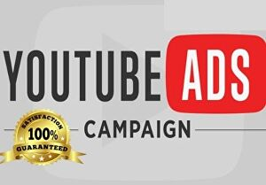 I will setup a youtube ads campaign with Google AdWords for video promotion