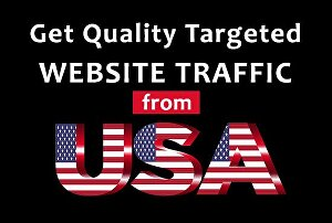 I will send Unlimited USA Website Traffic For 20 Days