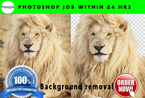 I will do any photoshop editing  background remove