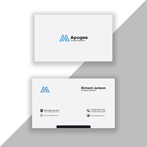 I will design brand identity visiting card within 24 hrs