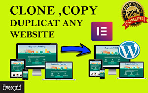 I will clone, copy or duplicate WordPress website design using elementor pro
