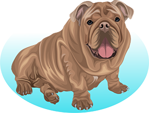 I will draw high quality vectors of your pet or any animal