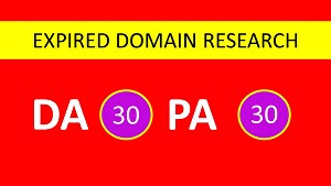 I will do high da expired domain research with authority backlinks