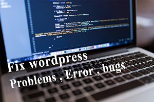 I will fix Wordpress Bugs, Wordpress Issues, Wordpress Error and Wordpress problems