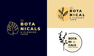 I will design a botanical hand drawn logo with brand identity