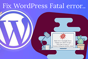 I will Fix WordPress fatal error within 24 hours