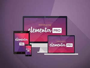 I will create an attractive WordPress website with Elementor pro