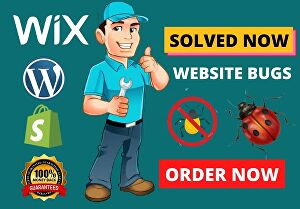 I will Solve Website bugs and fix website errors
