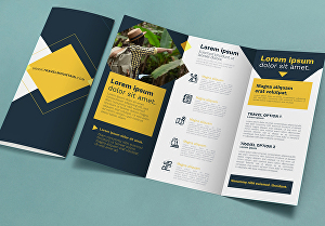 I will Design Brochure, Booklet, Company Profile, Magazine