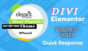 I will create your modern website using elementor pro DIVI Builder