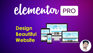 I will build a full website with Elementor pro