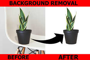 I will  do cutout image background removal, transparent background