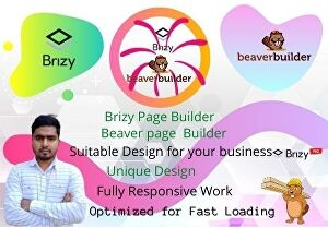 I will clone and build modern responsive wordpress website using brizy builder or beaver builder