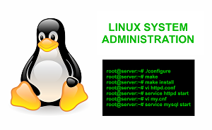 I will do Linux system administration support for 1 hour