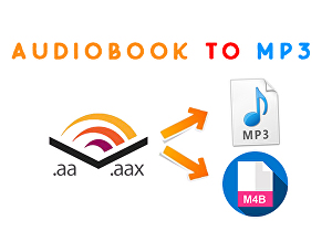 I will convert audible file to mp3 or m4b format