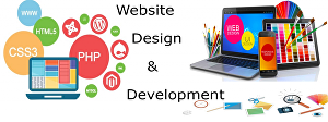 I will do Website Development
