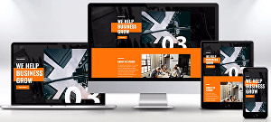 I will design and develop full responsive website