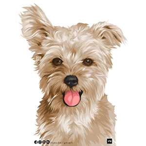 I will draw your pet into vector style